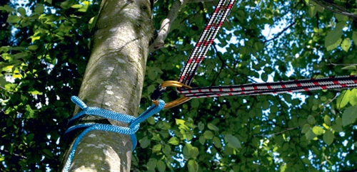 Techniques For Safe Rigging American Arborist Supplies Blog